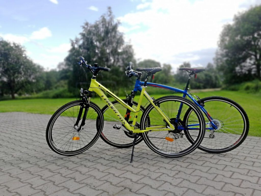 Bikes for rent